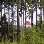 Zámeček z lesa