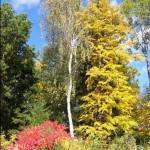 0-barvy-podzimu-v-rudolticich